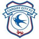 cardiff-city